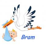geboortesticker-jongen-geboorte-stikker-raamsticker-baby-550x550 (2)